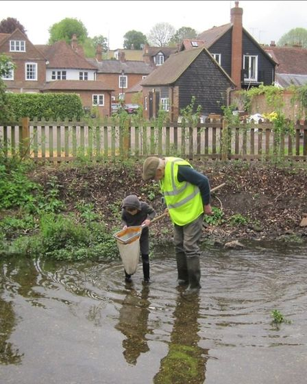 The Ver Valley Society helped children discover what lives in the #RiverVer and explore the unique c
