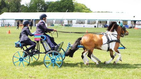 Herts County Show 2019 - Scurry Racing.Picture: Karyn Haddon