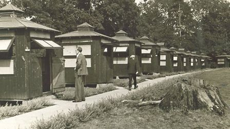 The old TB huts at Papworth