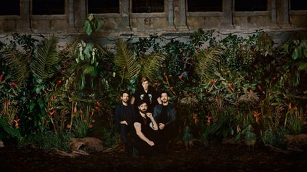 Foals are at Thetford Forest on June 20