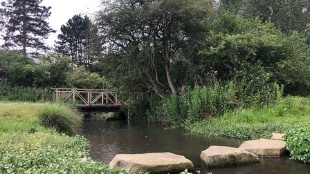 Mill River Nature Reserve in Shingay-cum-Wendy. Picture: Stuart Bennett