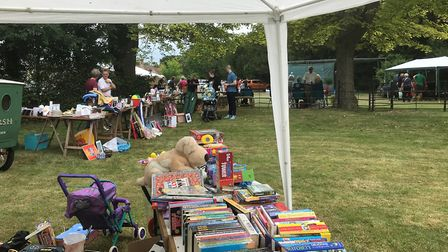 Toy stalls at Whaddon fete. Picture: David Grech