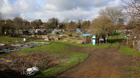 The Cottonmill allotments are leased from St Albans District Council. Picture: Danny Loo