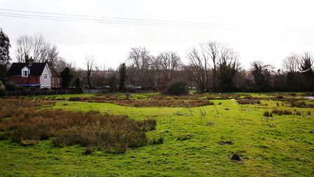 There is plenty of green space in the Cottonmill area. Picture: Danny Loo
