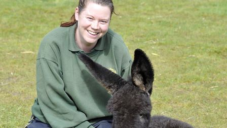 Hamerton Zoo Park keeper Rosa King. Picture: ARCHANT