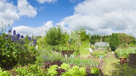 National Allotments Week is fast approaching. Picture: iStock/PA