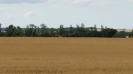 A plane as made an emergency landing in a Fowlmere field. Picture: Tom Jackson