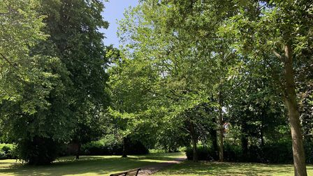 Lydekker Park has once again been awarded a Green Flag Award. Picture: HTC