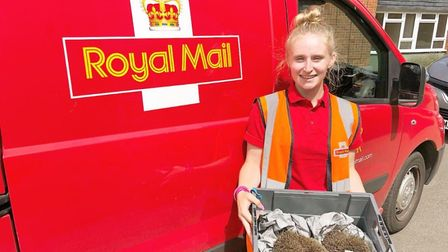 Postie, Fallon Williams, with the two rescued hedgehogs, Cheese and Pickle.