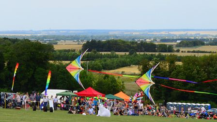 Royston Kite Festival 2019 at Therfield Heath. Picture: Neil Heywood
