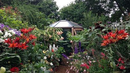 After: Frances and Trevor have transformed their garden into a tropical retreat. Picture: Trevor Bar