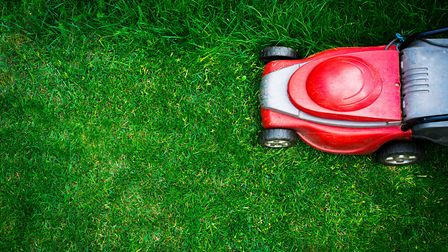Cutting it: The perfect lawn mowing session needs to be well timed. Picture: Getty Images/iStockphot