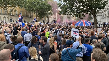 Protests sprung up around Westminster last night. Picture: Harpenden for Europe