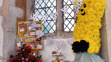 The Yelling Flower Festival 2019. Picture: ARCHANT