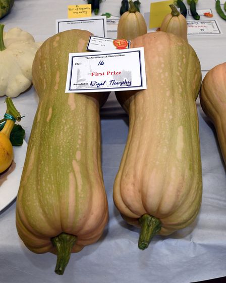 There were some prize marrows at the Alconbury Show