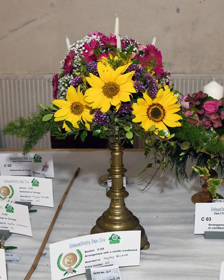 There were hundreds of entries for this year's Godmanchester Town Show. Picture: ARCHANT