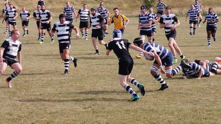 Royston Rugby Club fell to a narrow loss at home to Harrow.