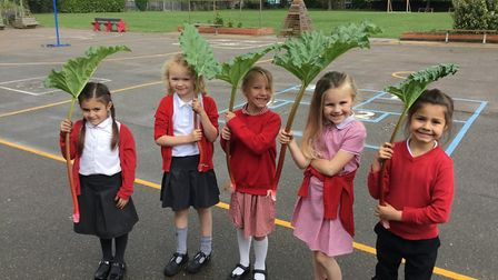 Students at Alconbury Primary School with produce from their garden