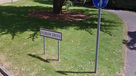 Thirty metres of hedgerow went up in flames on Pegrum Drive in London Colney. Picture: Google Maps