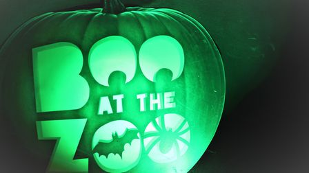 Boo at the Zoo is being held over October half term at ZSL Whipsnade Zoo. Picture: ZSL