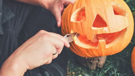Pumpkins are relatively easy to grow, and don't need as much space as you might think. Picture: Gett