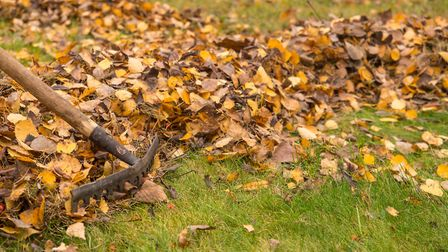 Raking up the leaves can feel like an unending task at this time of year. Picture: Getty Images/iSto