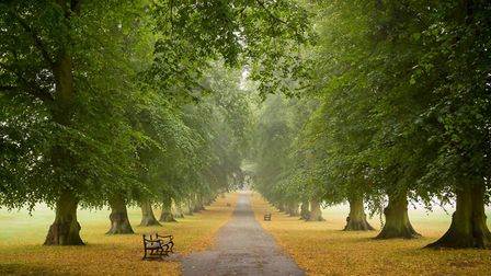 One of Harpenden photographer Steve Collins' Royal Photographic Society submissions.