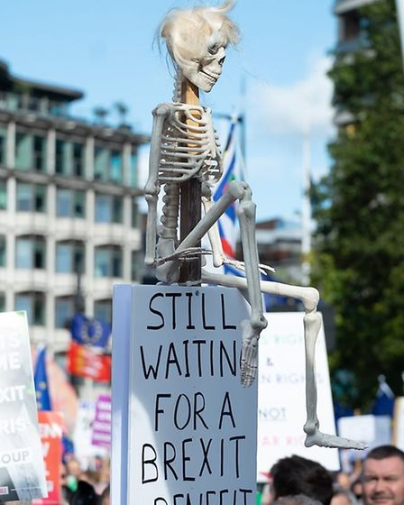Campaigners from St Albans for Europe took part in the People's Vote March in London. Picture: Andy