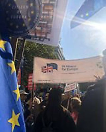 Campaigners from St Albans for Europe took part in the People's Vote March in London. Picture: Kirst