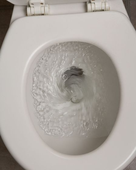 Make sure you only flush the 3Ps - pee, paper and poo. Picture: iStock/PA