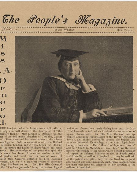 Eleanor Ormerod featured in The People''s Magazine, 1901. Picture: St Albans Museums