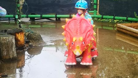 Gulliver's Land, Dinosaur and Farm Park - riding one of the dinosaurs.