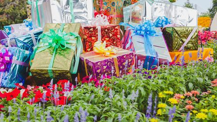 Keen gardeners are spoilt for choice this Christmas. Picture: iStock/PA