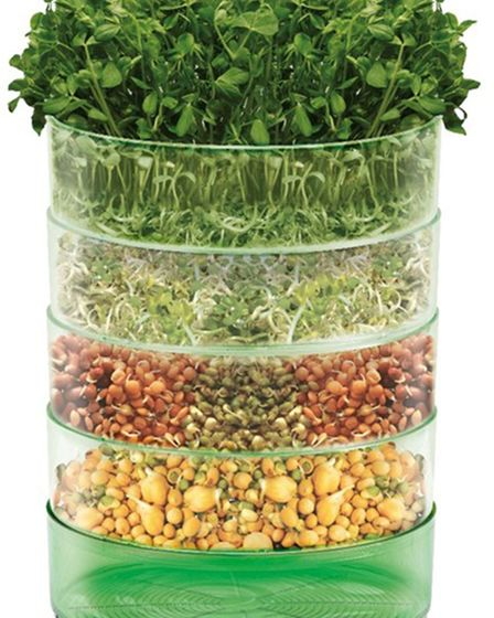 Microgreens Kitchen Seed Sprouter, £11.99, Johnsons Seeds (johnsons-seeds.com). Picture: Johnsons Se