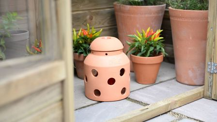 Bio Green FireFly, £29.99 (available from December), Hillier Garden Centres in store only or Amazon.