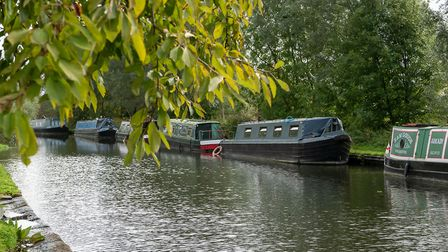 The Canal in Boxmoor. Picture: DANNY LOO