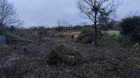 Neighbours of the site fear its clearance will have an impact on wildlife in the area. Picture: CONT