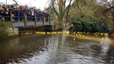 The New Year's Day Rubber Duck Race in Harpenden raised money for Cancer research centred at Mount