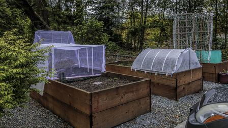 4. Create no-dig vegetable beds. Picture: iStock/PA
