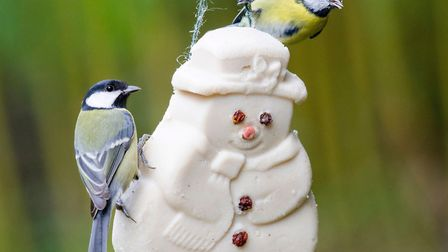 4. It had to be suet: A cute suet snowman from CJ Wildlife. Picture: CJ Wildlife/PA