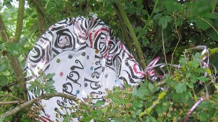 A plastic balloon found by Ver Valley Society volunteers around the River Ver in St Albans. Picture: