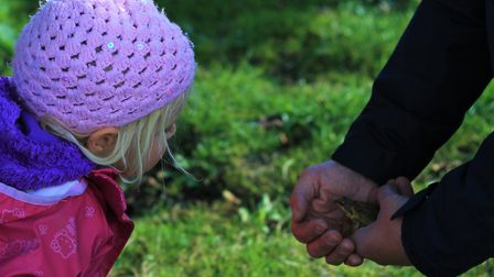 Fingertips Woodland Nursery is opening at Manland Primary School in Harpenden. Picture: DVO Agency