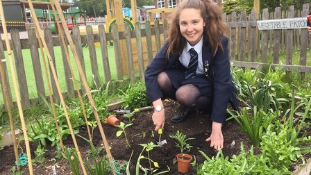 Sir John Lawes will be showing off their eco-garden at the St Albans Sustainability Festival which s