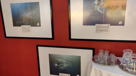 St Albans Greenpeace held a 'Protect the Oceans' exhibition at the Odyssey Cinema. Picture: Greenpea