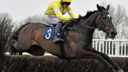 Maire Banrigh and jockey Harry Skelton soar over a fence during their victory in the Pertemps Lady P