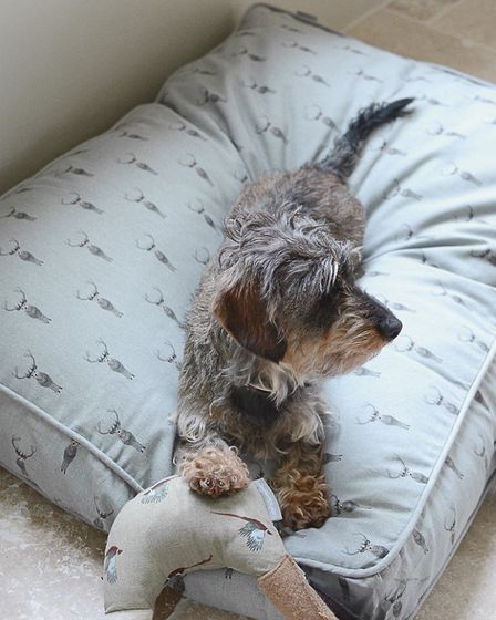 Sophie Allport Highland Stag large pet mattress with removable water and stain resistant cover www.s