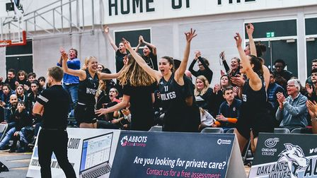 The Oaklands Wolves bench celebrate a big three points gainst Nottingham Wildcats in the WBBL during