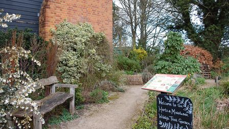 The HMWT garden by Verulamium Park could form part of the Wilder St Albans project.