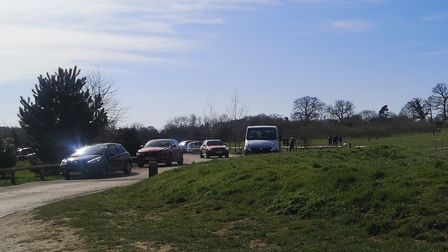 Crowds at Heartwood Forest in Sandridge.