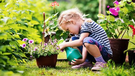 With many of us self-isolating, there's never been a better time to get out in the garden. Picture: